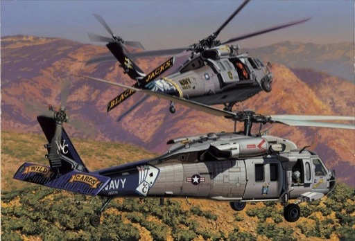 blackhawk helicopter model kits with Product on 3 further 29708238872 moreover Uh 1 huey clipart moreover Rc Hughes 500 Helicopter moreover 700 Size SH60 SuperScaleTM Seahawk p 2825.